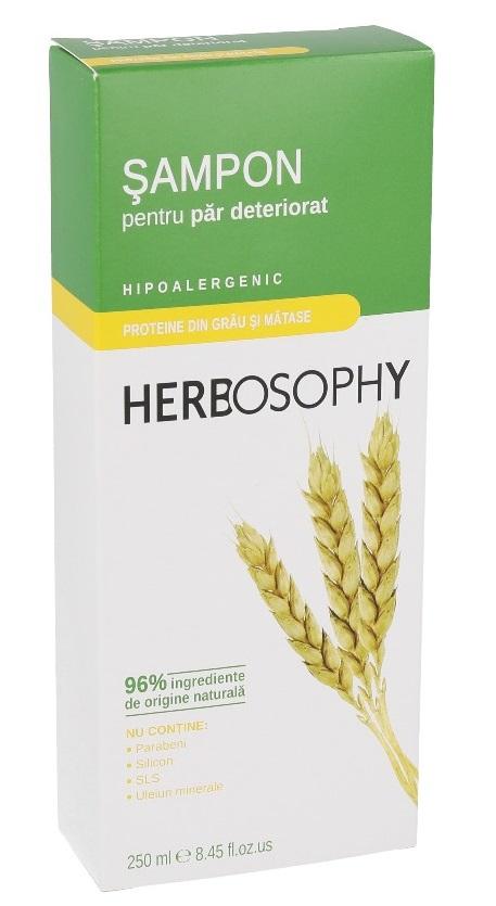 Herbosophy, Sampon cu proteine din grau, 250ml imagine produs 2021