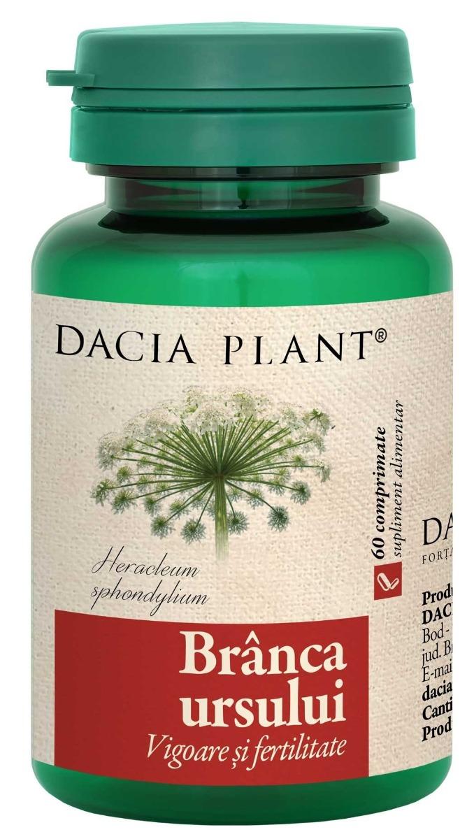 Branca Ursului, 60 comprimate, Dacia Plant drmax.ro