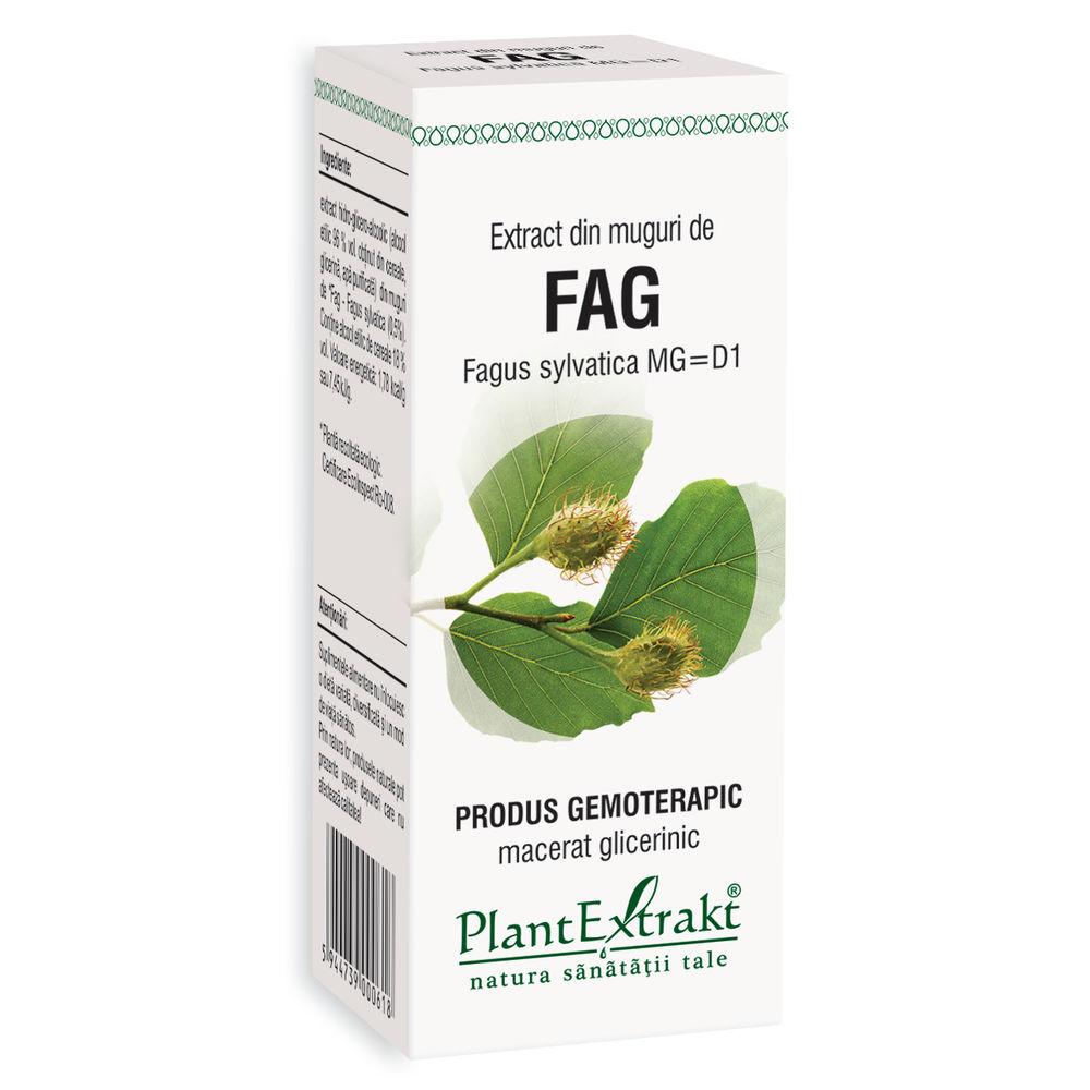 Extract din muguri de Fag, 50ml, PlantExtrakt imagine produs 2021