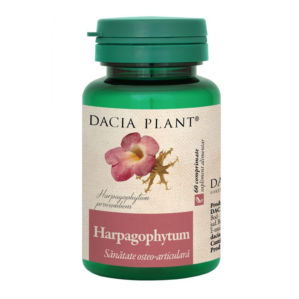 Harpagophytum, 60 comprimate, Dacia Plant drmax.ro