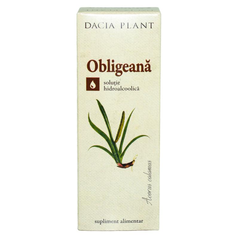 Tinctura de obligeana, 50ml, Dacia Plant drmax.ro
