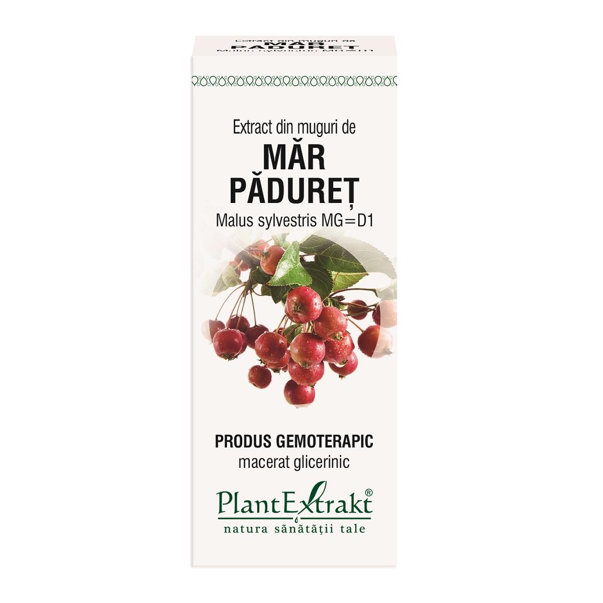 Extract din muguri de Mar Paduret, 50ml, Plantextrakt imagine produs 2021