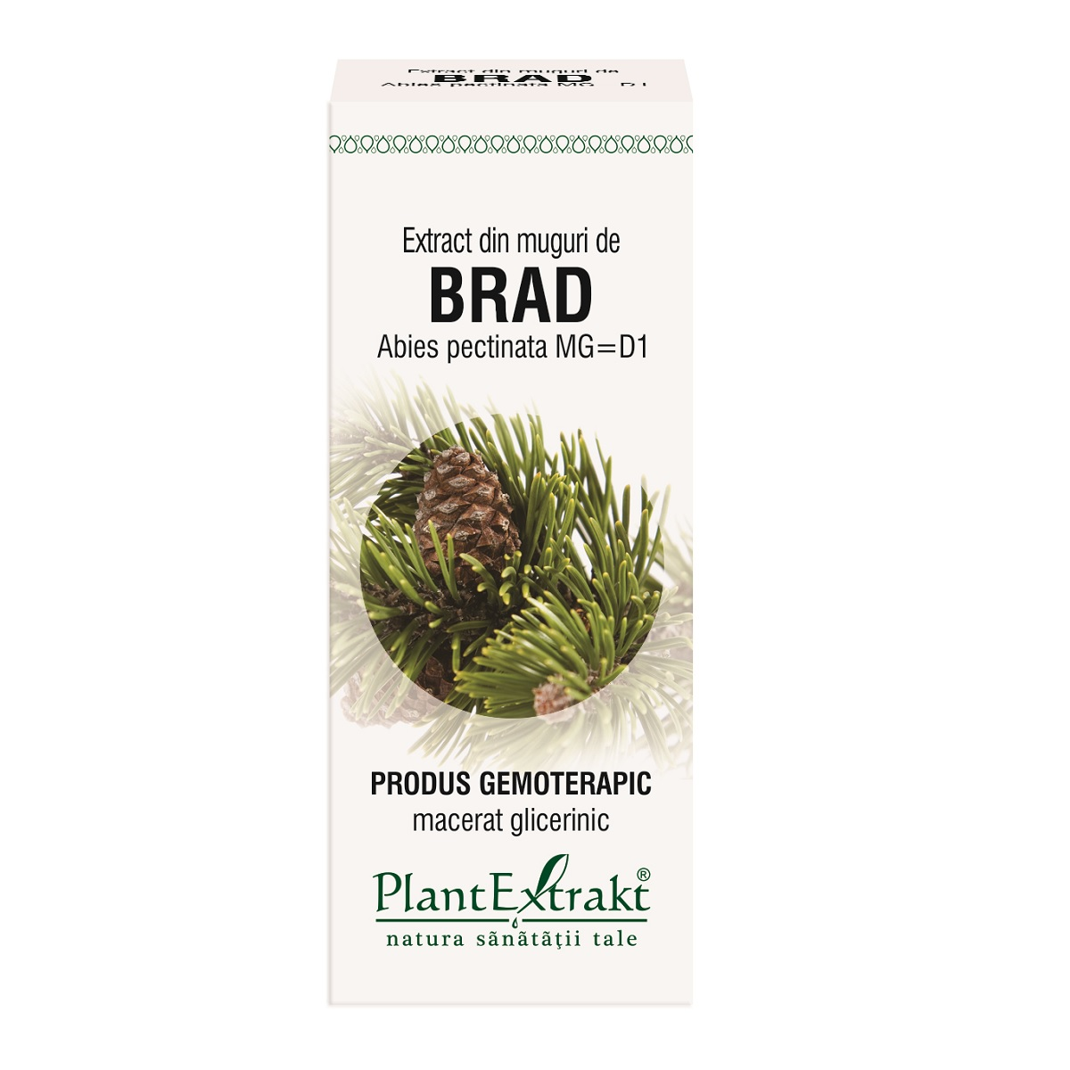 Extract din muguri de Brad, 50ml, Plantextrakt imagine produs 2021
