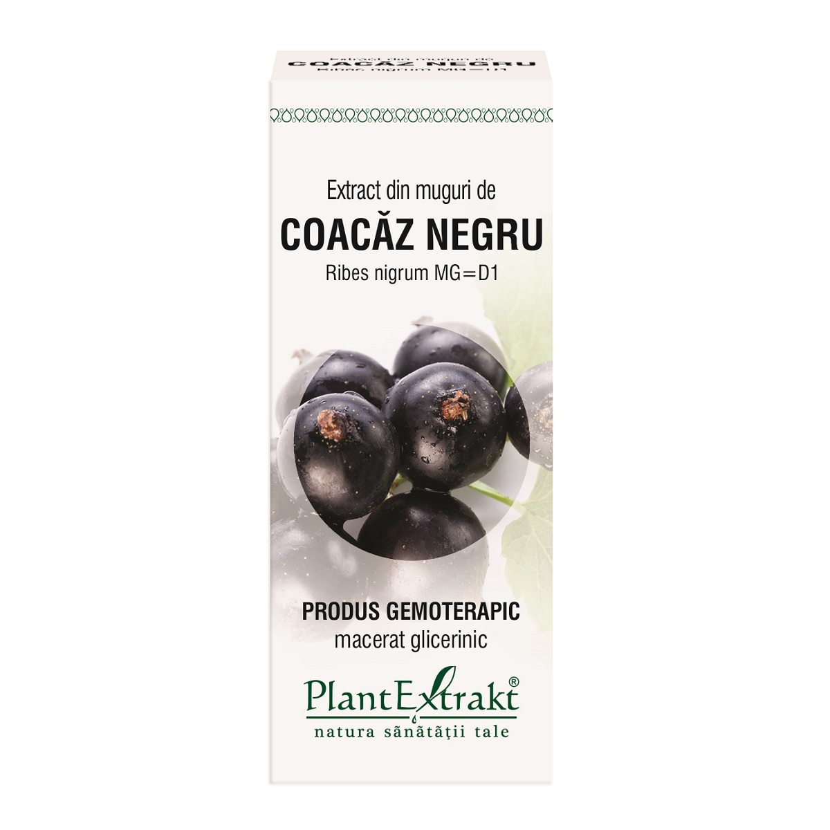 Extract din muguri de coacaz negru, 50ml, Plant Extrakt drmax.ro