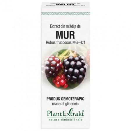 Extract din mladite de mur, 50ml, Plantextrakt drmax.ro