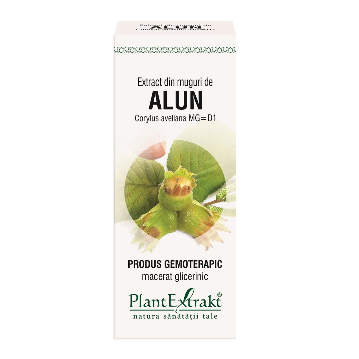 Extract din muguri de Alun, 50ml, Plantextrakt imagine produs 2021