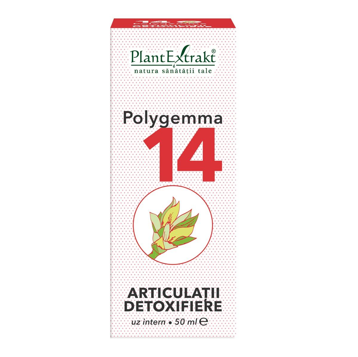 Polygemma 14 Articulatii detoxifiere, 50ml, Plant Extrakt drmax poza