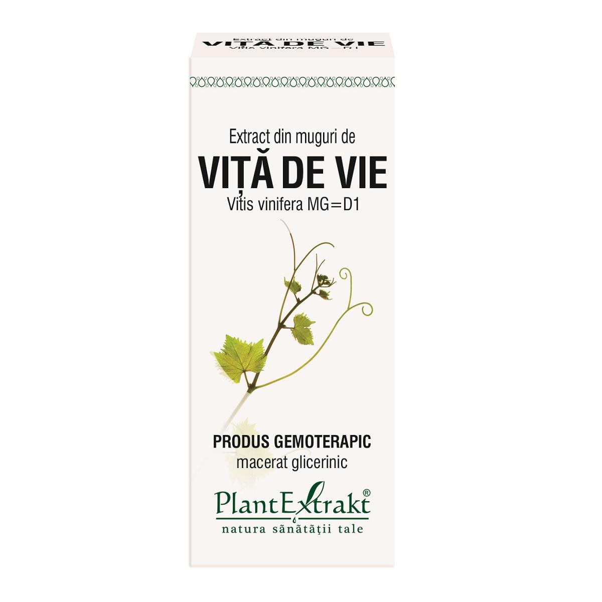Extract din muguri de Vita de Vie, 50ml, Plantextrakt imagine produs 2021