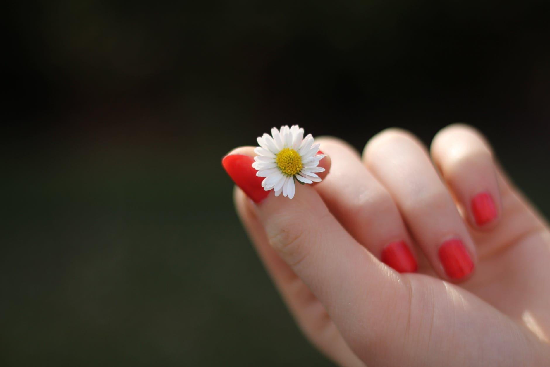 pierdere în greutate cu unghii fragile